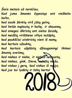 Šiais metais aš norėčiau...