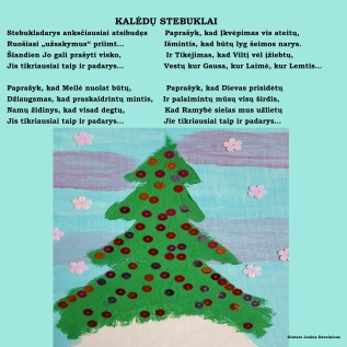 Kalėdų stebuklai